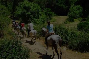Randonnée et équitation camping en Bretagne