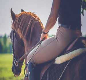 Balade à cheval camping Bretagne